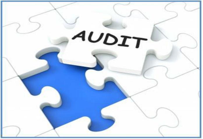 Backup Data Audit